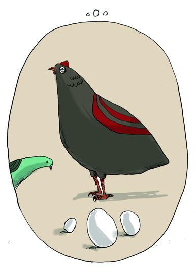 Güvercinler Ne Diye Bağırır 78