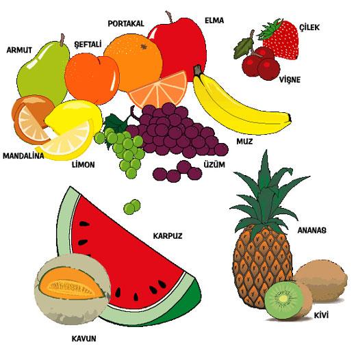 Mevsimlere Göre Meyveler Cicicee