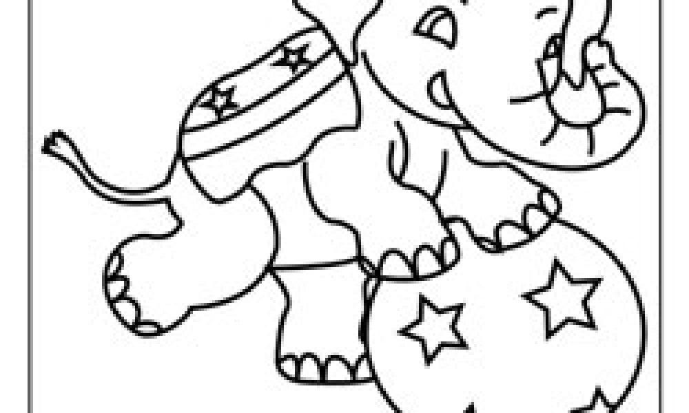 Fil Boyama Kağıdı Cicicee