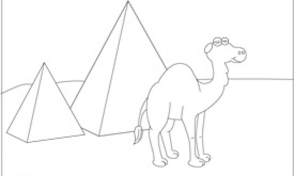 Mısırda Deve Cicicee
