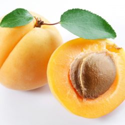 Apricot : Kayısı