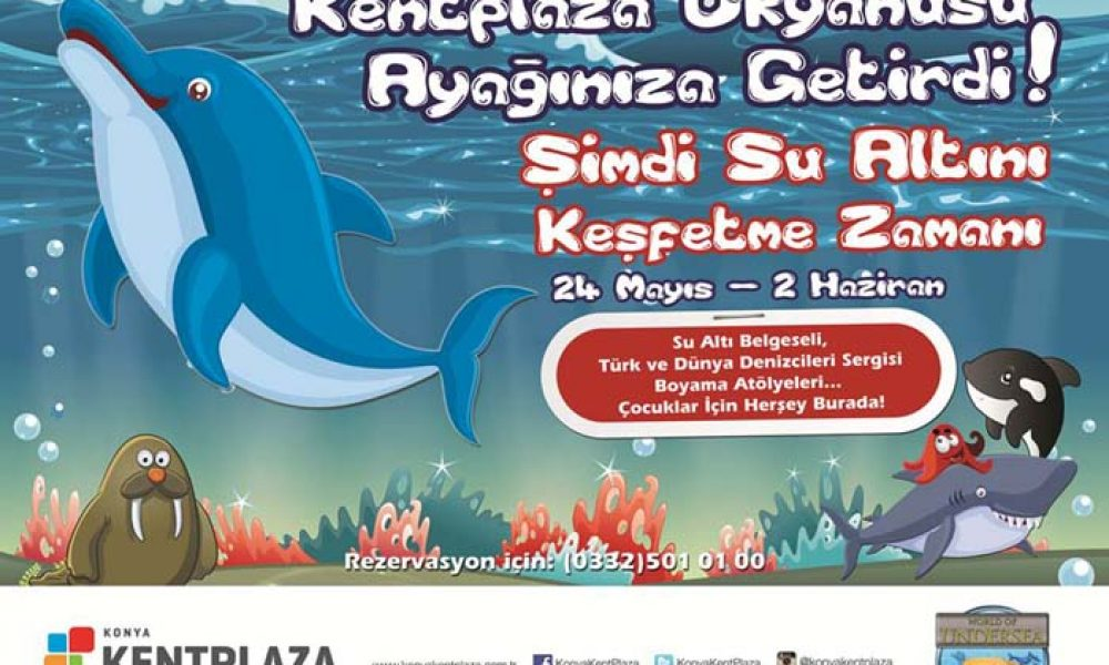 Deniz Canlıları Sergisi Kent Plazaya Geliyor Cicicee