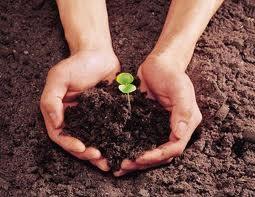 toprak-nasil-meydana-gelir