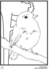 şirin Kuş Boyama çocuklar Için Boyama Sayfaları Cicicee