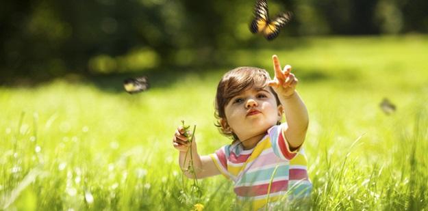 bebeklerde böcek sokması