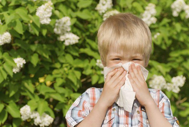 yaz-hastalıkları-ve-cocuklar (3)