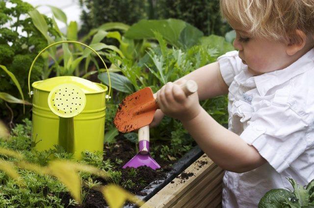 Çocuklara Doğa Sevgisi Aşılama