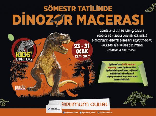 Optimum AVM Dinozor Macerası Sömestr ETkinlikleri