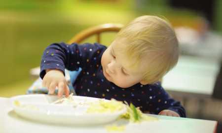 bebekler ne zaman balık yiyebilir