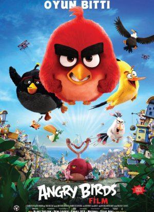 Angry Bird - Oyun Bitti