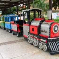 Tren Gezisi