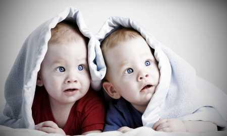 ikiz bebek gelişimi