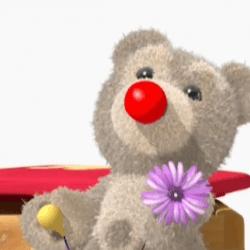 Ayıcık Bombo ve çiçek