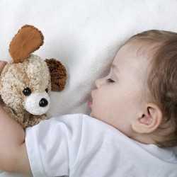 oyuncağıyla uyuyan bebek