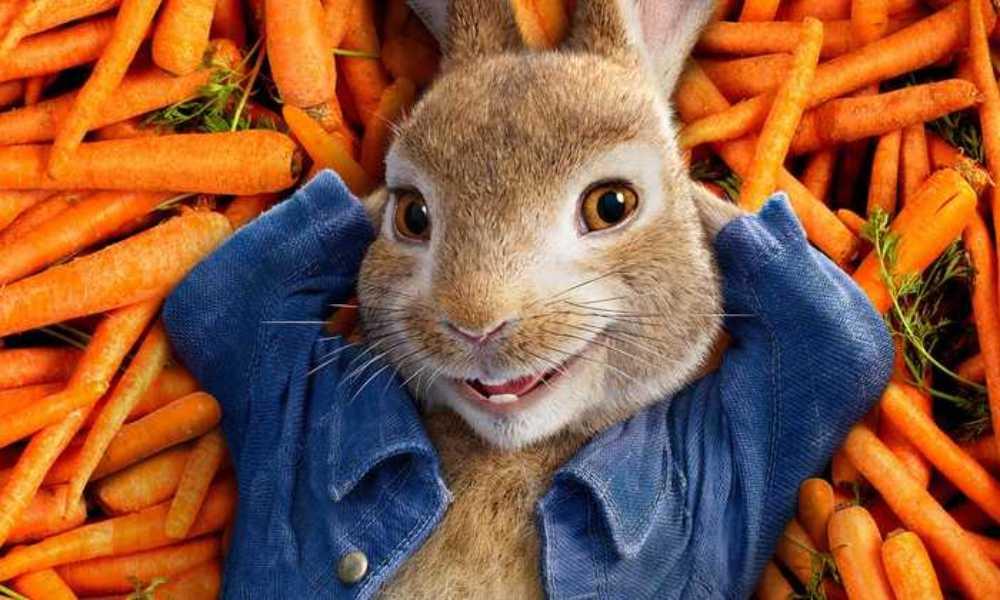 Tavşan Peter 2