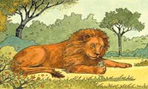 Aslan ile Fare Masalı
