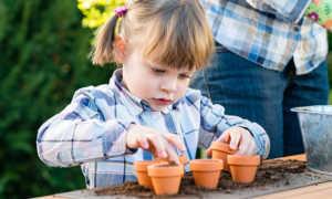Okul Öncesi Bitki Yetiştirme