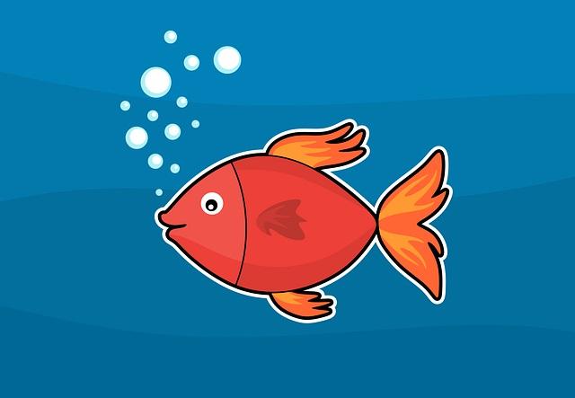 Kırmızı Balık Masalı